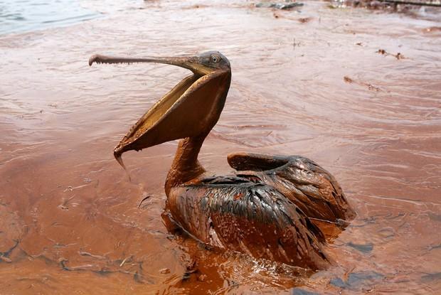 20 bức ảnh gây shock cho thấy nguồn nước trên toàn thế giới đang ô nhiễm nghiêm trọng - Ảnh 1.