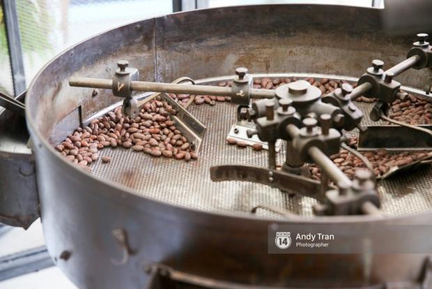 Việt Nam đang sở hữu loại chocolate ngon nhất thế giới - Ảnh 10.