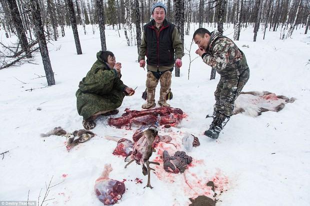 Chùm ảnh tuyệt đẹp về bộ tộc chuyên ăn thịt sống, uống máu tuần lộc - Ảnh 8.