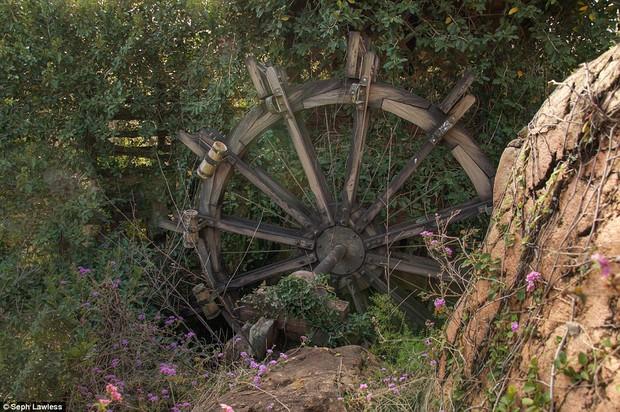 Hình ảnh ghê rợn bên trong công viên nước bỏ hoang 15 năm của Disney - Ảnh 10.