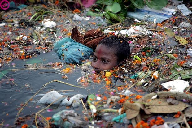 Loạt ảnh chấn động cho thấy đại dương đang trở thành hố rác khổng lồ của nhân loại - Ảnh 10.