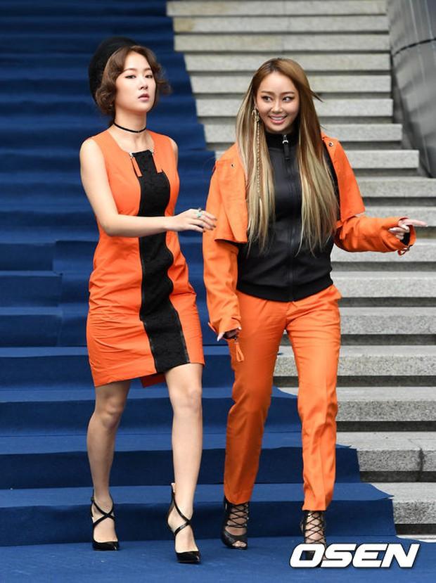 Min khoe đụng độ Red Velvet, SISTAR và Key (SHINee) khi dự show tại Tuần lễ thời trang Seoul - Ảnh 15.