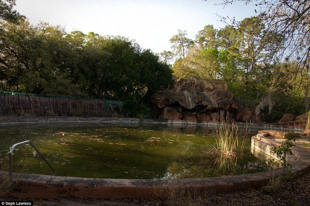 Hình ảnh ghê rợn bên trong công viên nước bỏ hoang 15 năm của Disney - Ảnh 12.