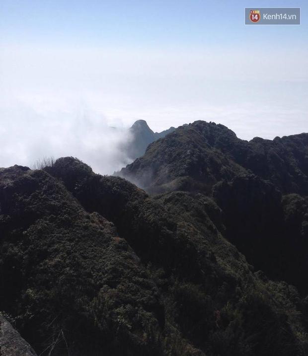 Quang cảnh tuyệt đẹp khi trải nghiệm tuyến cáp treo lên đỉnh Fansipan - Ảnh 16.