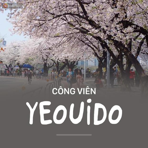 13 địa điểm bạn nhất định phải ghé thăm nếu đi Seoul xuân hè này! - Ảnh 2.