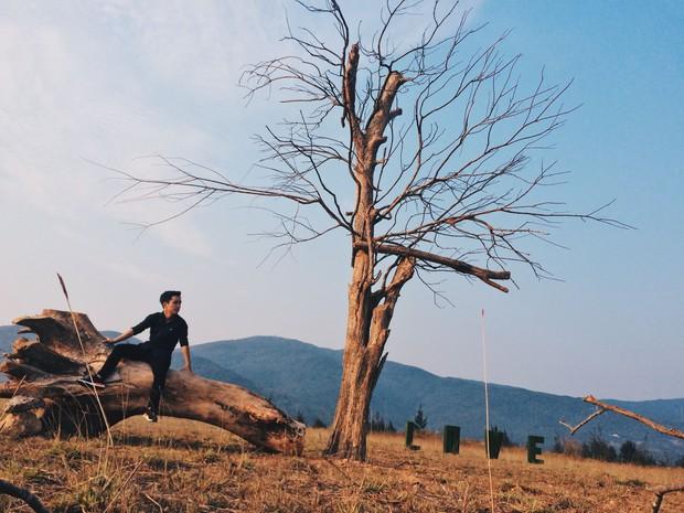 Giới trẻ Đà Nẵng sắp có thêm điểm chụp ảnh mới: Một phim trường đẹp như châu Âu - Ảnh 16.