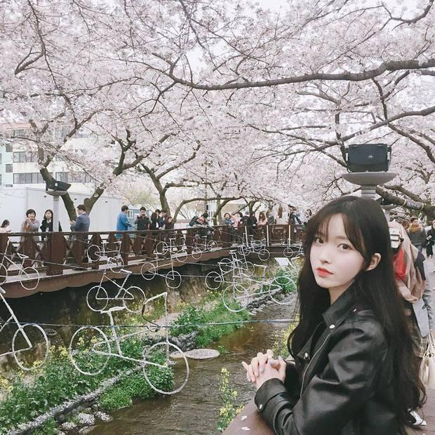 Mặc dù gương mặt na ná nhau, nhưng 4 ulzzang Hàn Quốc này vẫn rất hot vì quá xinh! - Ảnh 16.