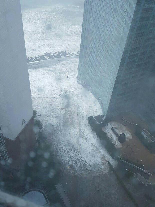 Cảnh tượng ngập lụt, đổ nát kinh hoàng sau bão tại siêu đô thị Busan của Hàn Quốc - Ảnh 10.