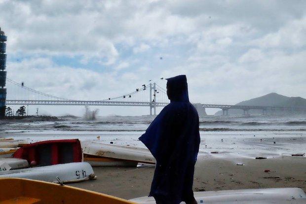 Cảnh tượng ngập lụt, đổ nát kinh hoàng sau bão tại siêu đô thị Busan của Hàn Quốc - Ảnh 18.