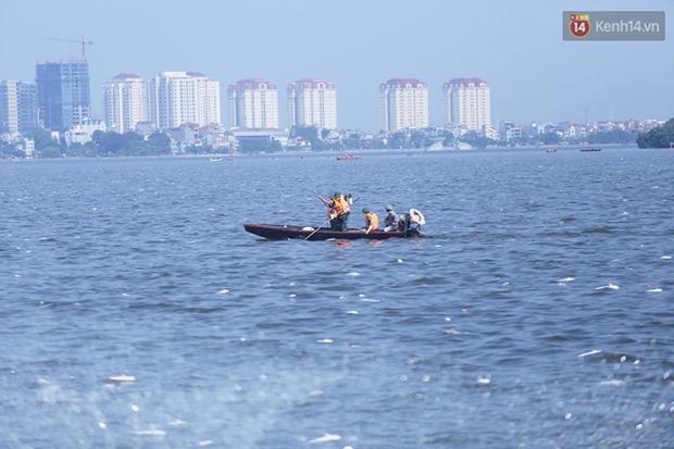 Ngày 3/10: Cá chết nổi ngày càng nhiều ở hồ Tây; đang tiếp tục bơm oxy, sục khí - Ảnh 7.