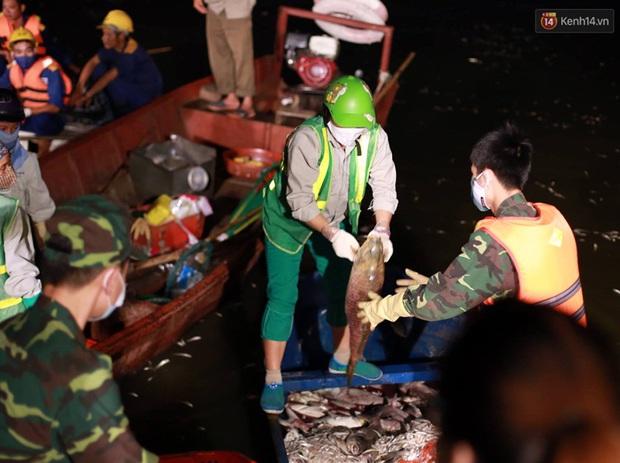Hà Nội: Trắng đêm khắc phục hậu quả cá chết trắng ven hồ Tây - Ảnh 4.