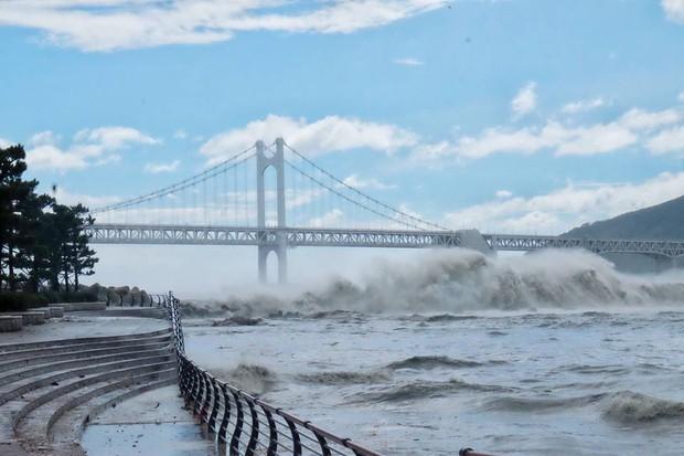 Cảnh tượng ngập lụt, đổ nát kinh hoàng sau bão tại siêu đô thị Busan của Hàn Quốc - Ảnh 26.