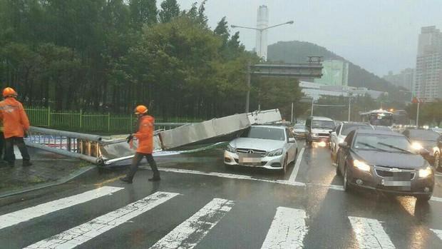 Cảnh tượng ngập lụt, đổ nát kinh hoàng sau bão tại siêu đô thị Busan của Hàn Quốc - Ảnh 6.
