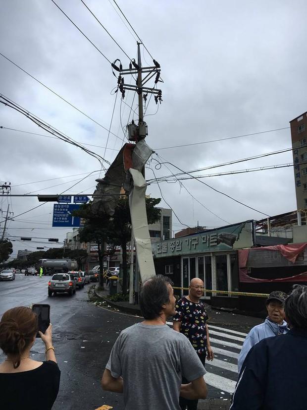 Cảnh tượng ngập lụt, đổ nát kinh hoàng sau bão tại siêu đô thị Busan của Hàn Quốc - Ảnh 29.