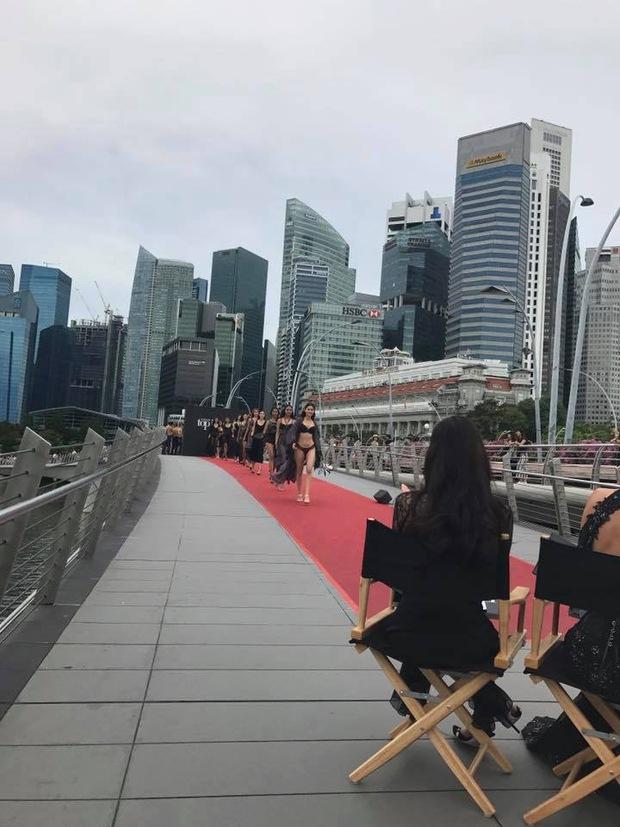 Hoa hậu Hoàn vũ Pia ngồi ghế nóng Next Top châu Á - Ảnh 5.