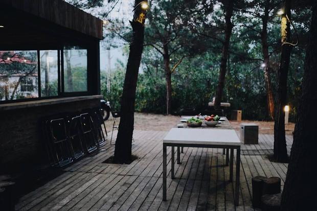 Hot nhất mùa Giáng sinh năm nay: Căn biệt thự giống hệt Twilight ở ngay gần Hà Nội - Ảnh 7.