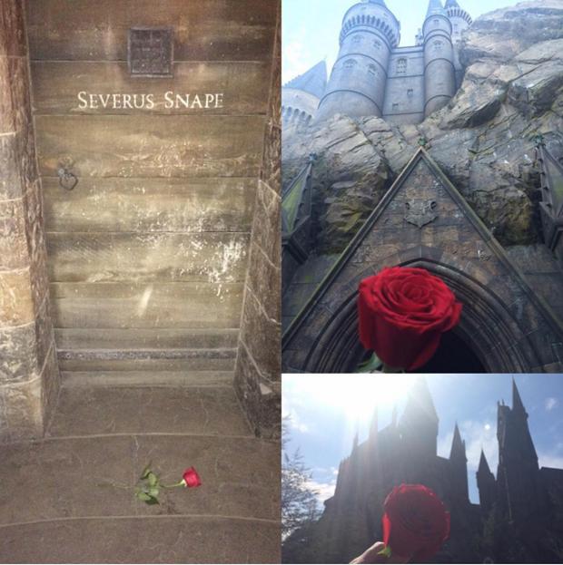 Fan Harry Potter đồng loạt giơ cao đũa phép tưởng niệm sự ra đi của Giáo sư Snape - Ảnh 9.