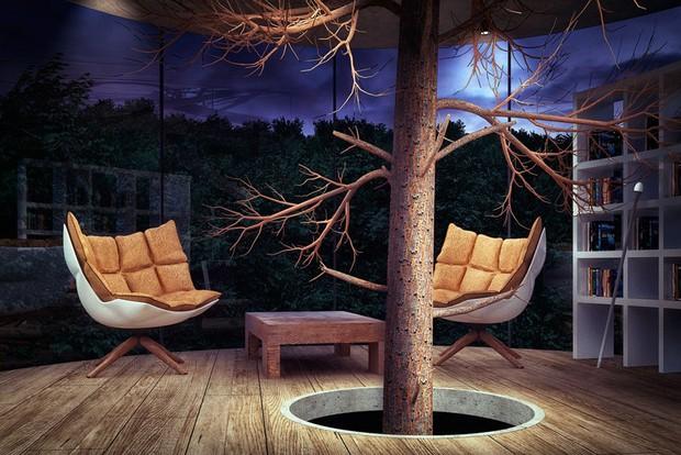 Nhà kính ôm lấy cây đẹp rụng rời giữa rừng xanh sâu thẳm - Ảnh 2.