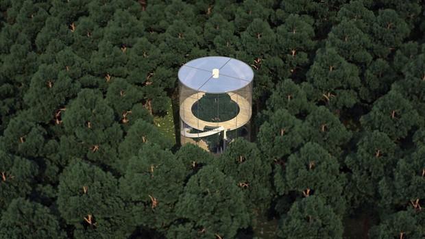 Nhà kính ôm lấy cây đẹp rụng rời giữa rừng xanh sâu thẳm - Ảnh 6.