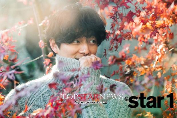 Park Bo Gum vượt mặt Song Joong Ki cùng loạt mỹ nam, mỹ nữ trong BXH danh tiếng - Ảnh 5.