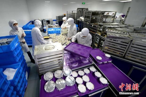 Chùm ảnh: Mục sở thị quy trình chuẩn bị thức ăn hàng không cực kỳ khoa học và nghiêm ngặt - Ảnh 8.