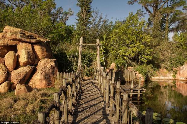 Hình ảnh ghê rợn bên trong công viên nước bỏ hoang 15 năm của Disney - Ảnh 16.