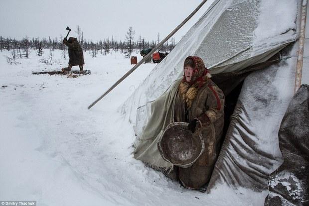 Chùm ảnh tuyệt đẹp về bộ tộc chuyên ăn thịt sống, uống máu tuần lộc - Ảnh 19.