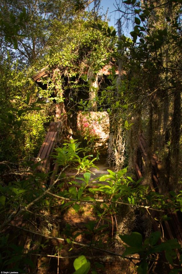 Hình ảnh ghê rợn bên trong công viên nước bỏ hoang 15 năm của Disney - Ảnh 17.