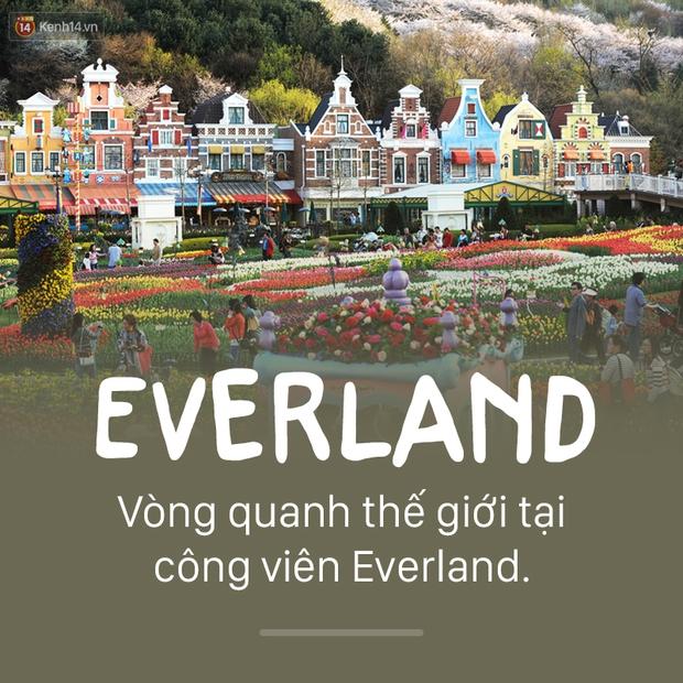 13 địa điểm bạn nhất định phải ghé thăm nếu đi Seoul xuân hè này! - Ảnh 11.