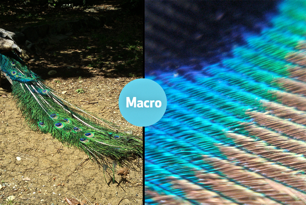 Ống kính cho điện thoại chỉ đáng vứt đi so với miếng dán hiển vi siêu mỏng này - Ảnh 3.