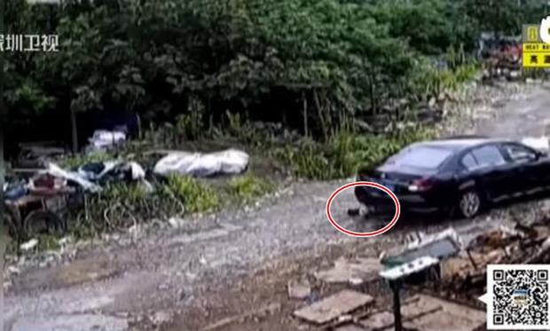Không quan sát kỹ lưỡng khi lùi xe, nữ tài xế cán qua người cháu trai 2 tuổi - Ảnh 3.