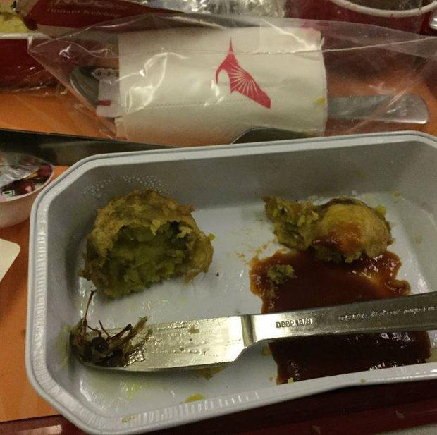 Ăn đến miếng cuối cùng mới kinh hoàng phát hiện ra gián chết trong suất ăn trên máy bay - Ảnh 2.