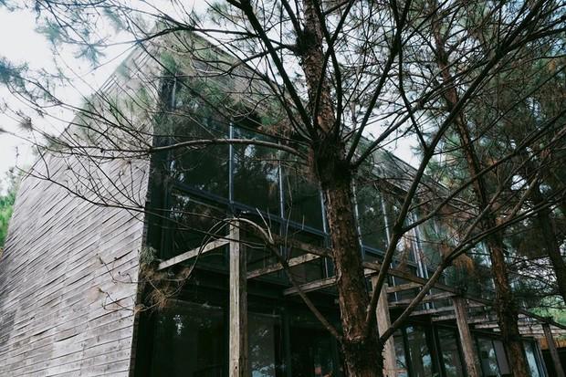Hot nhất mùa Giáng sinh năm nay: Căn biệt thự giống hệt Twilight ở ngay gần Hà Nội - Ảnh 18.