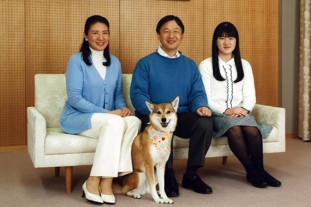 Tình yêu trọn đời mà Thái tử Nhật dành cho vị Công nương trầm cảm lay động trái tim hàng triệu người - Ảnh 13.
