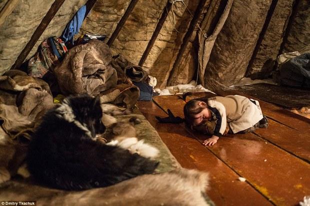 Chùm ảnh tuyệt đẹp về bộ tộc chuyên ăn thịt sống, uống máu tuần lộc - Ảnh 20.