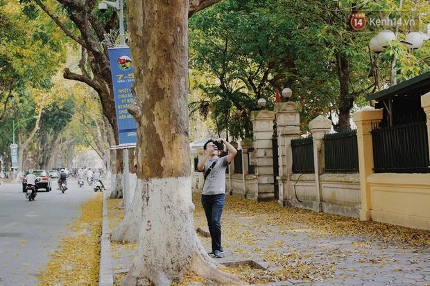 Người Hà Nội thích thú chụp ảnh với những con đường trải thảm lá vàng - Ảnh 7.