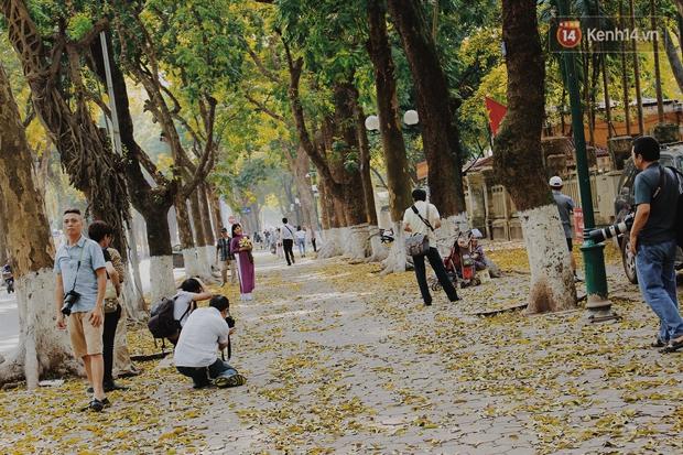Người Hà Nội thích thú chụp ảnh với những con đường trải thảm lá vàng - Ảnh 5.