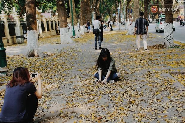 Người Hà Nội thích thú chụp ảnh với những con đường trải thảm lá vàng - Ảnh 10.