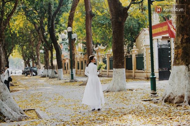 Người Hà Nội thích thú chụp ảnh với những con đường trải thảm lá vàng - Ảnh 8.
