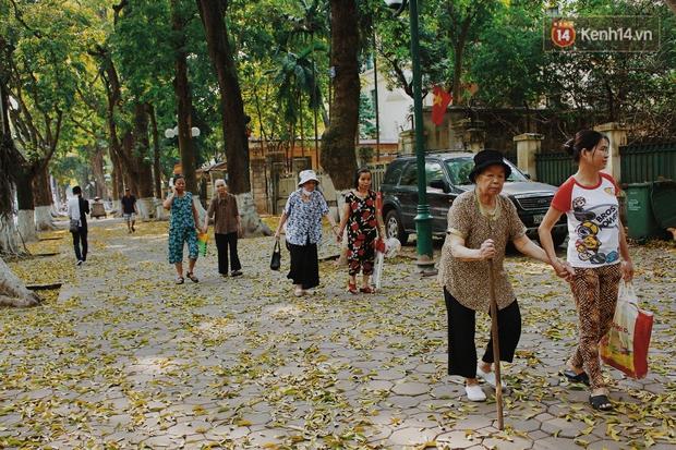 Người Hà Nội thích thú chụp ảnh với những con đường trải thảm lá vàng - Ảnh 4.
