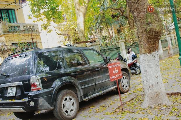 Người Hà Nội thích thú chụp ảnh với những con đường trải thảm lá vàng - Ảnh 12.