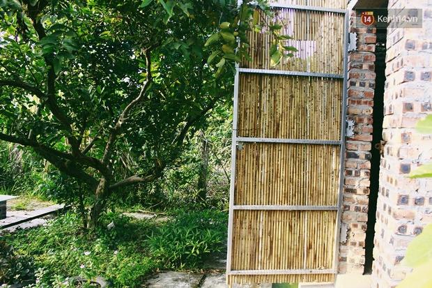 Ngôi nhà đặc biệt xây bằng 8.800 vỏ chai nhựa ở Hà Nội - Ảnh 12.