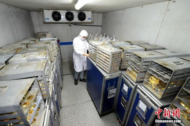 Chùm ảnh: Mục sở thị quy trình chuẩn bị thức ăn hàng không cực kỳ khoa học và nghiêm ngặt - Ảnh 12.