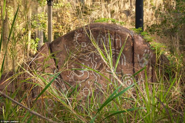 Hình ảnh ghê rợn bên trong công viên nước bỏ hoang 15 năm của Disney - Ảnh 20.