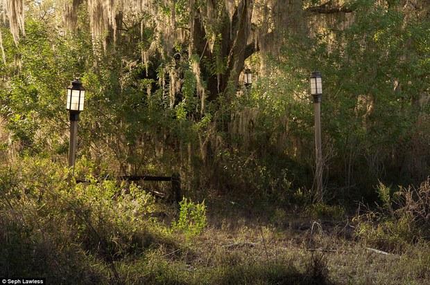 Hình ảnh ghê rợn bên trong công viên nước bỏ hoang 15 năm của Disney - Ảnh 23.