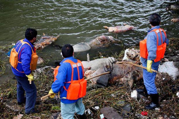 Loạt ảnh chấn động cho thấy đại dương đang trở thành hố rác khổng lồ của nhân loại - Ảnh 26.