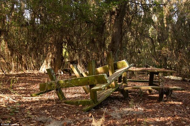 Hình ảnh ghê rợn bên trong công viên nước bỏ hoang 15 năm của Disney - Ảnh 24.