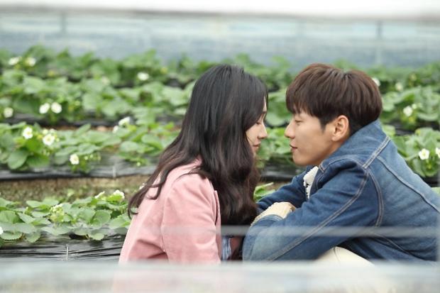 """Sweet Stranger and Me của """"bố trẻ"""" Kim Young Kwang và Soo Ae dần gục ngã - Ảnh 42."""