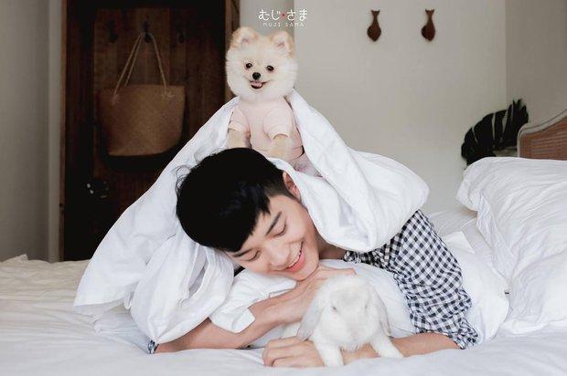 Gia đình nhỏ với trai đẹp, một em cún lúc nào cũng cười và hai chú thỏ lông xù siêu đáng yêu - Ảnh 32.