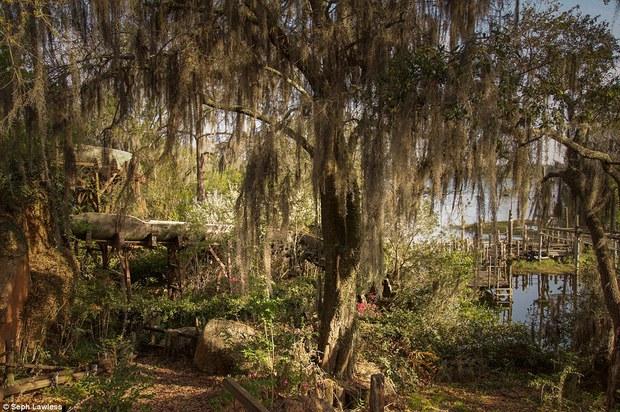 Hình ảnh ghê rợn bên trong công viên nước bỏ hoang 15 năm của Disney - Ảnh 3.